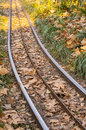 Carnival train rail amusement small on grassland Stock Photography
