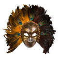 Carnival venetian mask with peacock feathers Royalty Free Stock Photo
