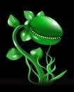 Carnivorous plant vector Royalty Free Stock Photo