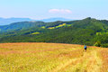 Carpathians Foto de Stock Royalty Free