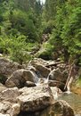 Carpathians cascade on river in mountains Stock Images