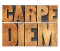 Carpe diem in wood type enjoy life before it is too late existential cautionary latin phrase by horace isolated text vintage Stock Images