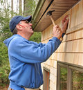 Carpenter installing cedar shingles Stock Image