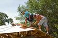 Carpenters Nailing Plywood Royalty Free Stock Photo