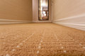 Carpet hotel floor and walls Royalty Free Stock Photography