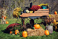 Carriage Pumpkin Display Royalty Free Stock Photo