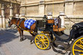 Carriage in Seville Royalty Free Stock Photography