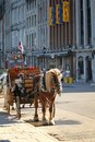 Carriage in a street of old port in montreal city Royalty Free Stock Photography