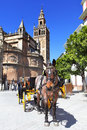 Carriages near cathedral of seville Royalty Free Stock Image