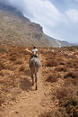 Carrier donkey and a man in a pathway. Crete. Greece Royalty Free Stock Photo