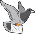 Carrier Pigeon Royalty Free Stock Images