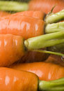 The carrot Stock Images