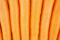 Carrot as texture is orange vegetable with carotene put background Stock Photography