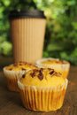 Carrot Muffin Royalty Free Stock Images