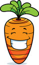 Carrot Smiling Stock Photo
