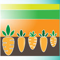 Carrots background vector set on colorful Royalty Free Stock Photos