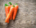 Carrots on brown fabric background a synthetic Royalty Free Stock Images