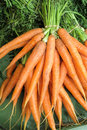 Carrots carrots a bunch of is for sale at a market in fruit and vegetables Royalty Free Stock Photography