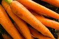 Carrots display market Royalty Free Stock Photography