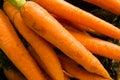 Carrots display market Royalty Free Stock Photography