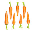 Carrots group on white background Stock Photos