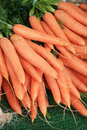 Carrots at market Royalty Free Stock Image