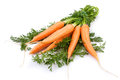 Carrots new on white background Stock Photos