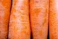 Carrots texture Royalty Free Stock Photo