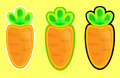 Carrots vector Stock Image