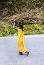 Carrying fire wood poor bhutanese farmer that she has gathered in the woods Royalty Free Stock Images