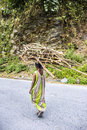Carrying fire wood a poor bhutanese farmer that she has gathered in the woods Stock Photo