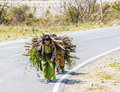Carrying fire wood two poor bhutanese farmers that they have gathered in the woods Royalty Free Stock Photos