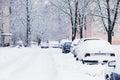 Auto da neve
