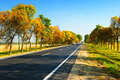 Cars on highway between autumn trees Royalty Free Stock Photo