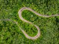 Cars on road. Extrem winding road in the middle of the forest, C Royalty Free Stock Photo