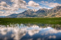 Carson valley reflection a of jobs peak on the green grass of nevada Stock Photo