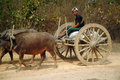 Cart being pulled by buffalo mandalay myanmar march unidentified farmer riding on their carrying supplies the highway runs along Royalty Free Stock Photos