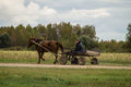 A cart with a horse in a Russian village. Royalty Free Stock Photo