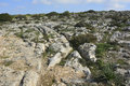 Cart ruts in clapham junction malta parallel grooves of prehistoric mysteriously scored into the rock at Stock Image
