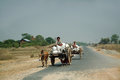Cart were drawn by oxen mandalay myanmar march unidentified farmer riding on their bull carrying supplies the highway runs along Royalty Free Stock Images