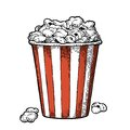 Carton bucket full popcorn. Vector black vintage engraving illustration Royalty Free Stock Photo