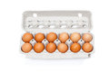 Carton of organic eggs a dozen fresh isolated on white Royalty Free Stock Images
