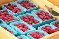 Cartons of Raspberries Royalty Free Stock Photo
