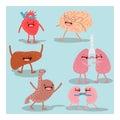 Cartoon anatomy, human organs. Vector set