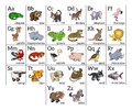 Cartoon animal alphabet chart learning with a illustration for each letter and upper and lowercase letters and Royalty Free Stock Images