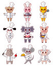 Cartoon animal chef icons set Stock Image
