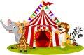 Cartoon animal circus with circus tent