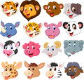 Cartoon animal head collection set illustration of Stock Photography