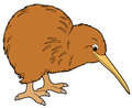 Cartoon animal kiwi flat coloring style illustration for the children beautiful Stock Photo