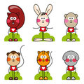 Cartoon animal  set Royalty Free Stock Images